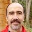 IT consultant, Delphi MVP